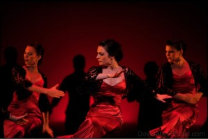 https://www.facebook.com/yaelisa.flamencos